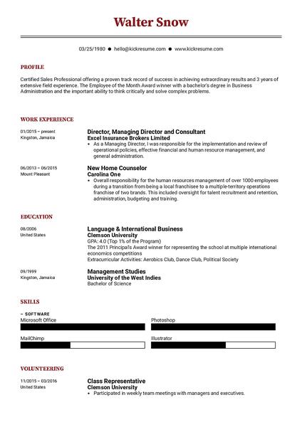 Plantilla de currículum Compact realizada por el creador de currículums de Kickresume